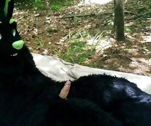 Furry Fucking Public Park