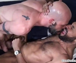 Bald bears assfucking doggystyle and raw