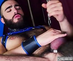 Cockhungry bear plowed raw and rimmed 6 min 720p