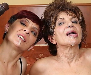 Grannies Gonzo Fucked Tarts Porn with old Ladies Loving..