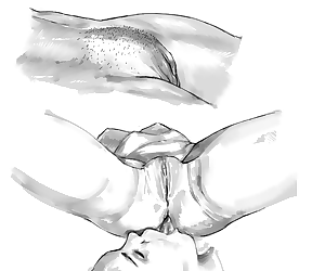 Artist - Graphographer - part 23