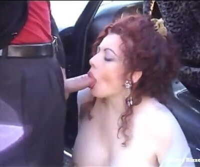 A Blowjob with Swallow to thank the Driver