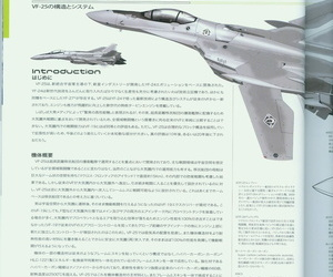 Variable Fighter Sir File VF-25 Messiah - part 2