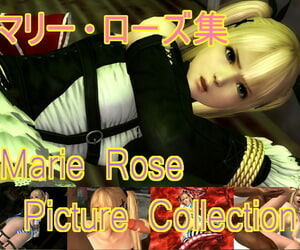 Omayim Marie Rose Set Dead or Alive