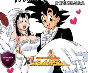 Funsexydragonball Wedding Night - Noche de Bodas Dragon..