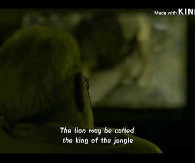 Mirzapur all lovemaking scene compilation HD 7 min 720p