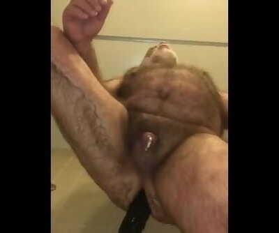 Boston Bear Pig Fur covered Hairy Extraordinary Fake penis Sheer pleasure
