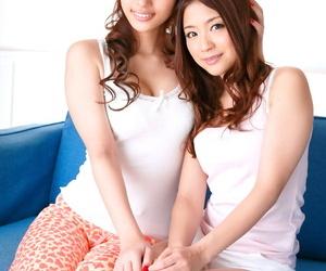 Brunette Japanese lady Cecil Kurokawa shares a firm dick..