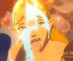 Zelda BOTW - Princess and the..