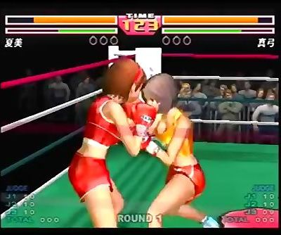 Female Boxing Game
