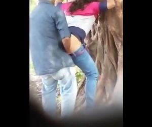 Desi lovers in park