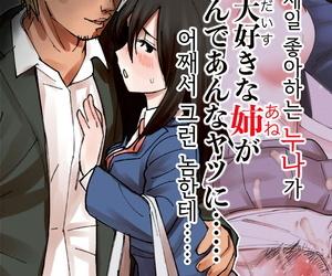 maku Boku no Daisuki na Ane ga Nande Anna Yatsu ni...... - 내가 제일 좋아하는 누나가 어째서 그런..