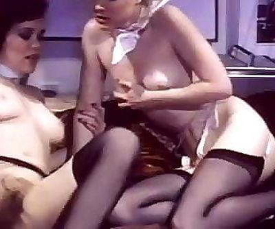 Swedish Erotica Hard 22 Seka & Desiree Sex 101