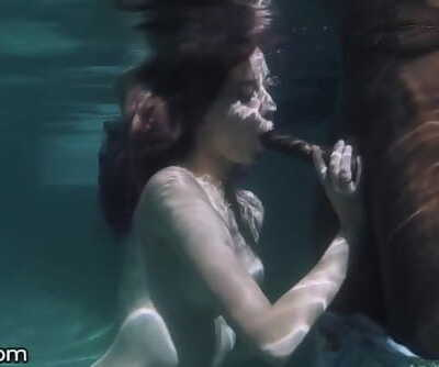 Haley Reed Deepthroats Underwater before Pounded in Shower
